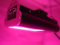 led kweeklamp te koop nieuw